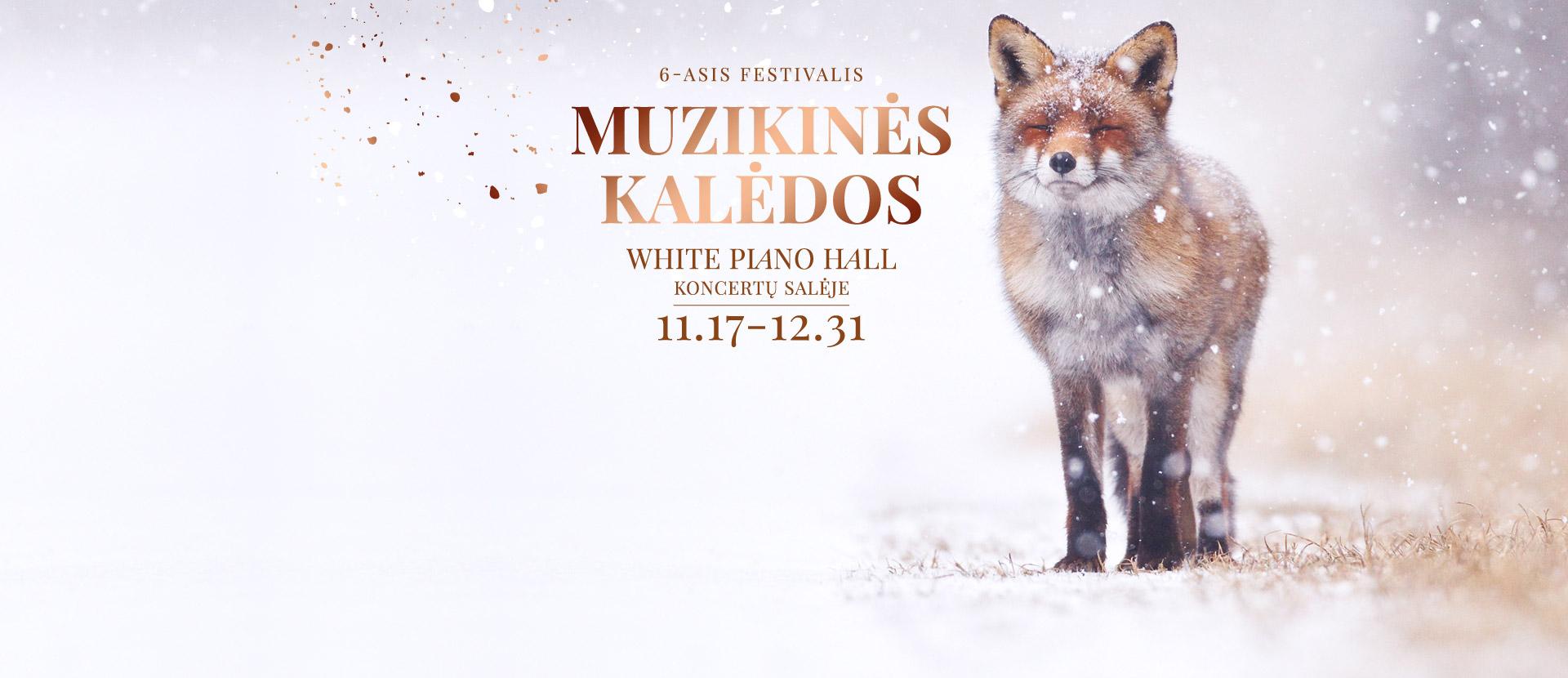 6-ASIS FESTIVALIS MUZIKINĖS KALĖDOS