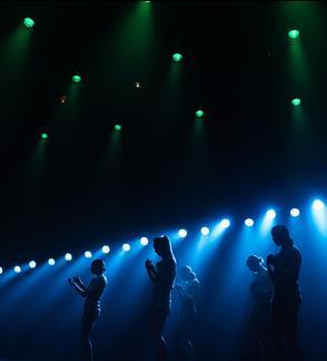 Šiuolaikinio šokio spektaklis KURMIS